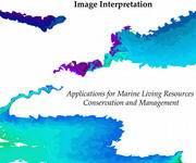 GIS电子书《Handbook of Satellite Remote Sensing Image Interpretation》(PDF版本下载)