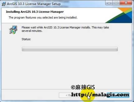 安装License Manager